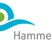 hamme logo copy