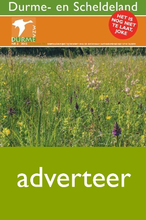 adverteer